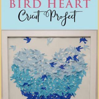 Shadow box idea | Cricut shadow box | ombre bird heart shadow box | how to make shadow box | #shadowboxideas #shadowboxmemorial #cricut #cricut projects #cricut beginner projects