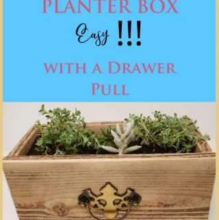 Planter Box made from a fence board nailed together with a drawer pull on front for deco and has 4 Succulent plants inside.