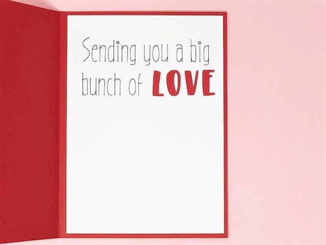 Sending you a bug bunch of love inside the card